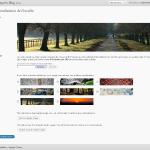 Personalisation du thème WordPress 3.0